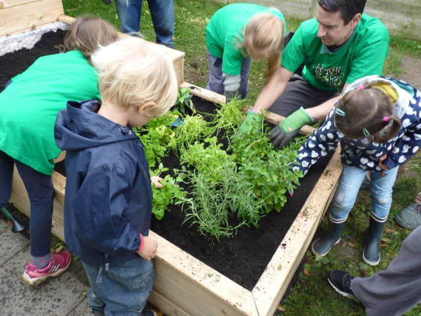 Kinder mit Betreuer vor einem Beet mit Käutern und Salat